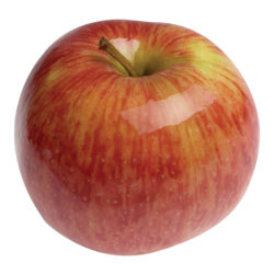 jonagold_apple[1]